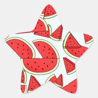 Wassermelone-Sommerzeit Stern-Aufkleber