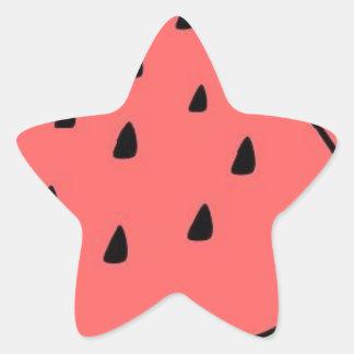 Wassermelone Stern-Aufkleber