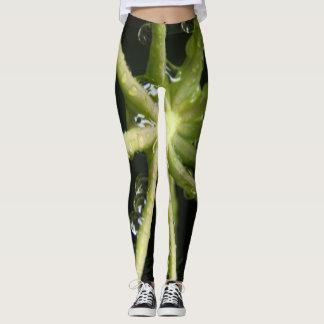 Wassertröpfchen auf Blattstämmen; Grüntöne Leggings