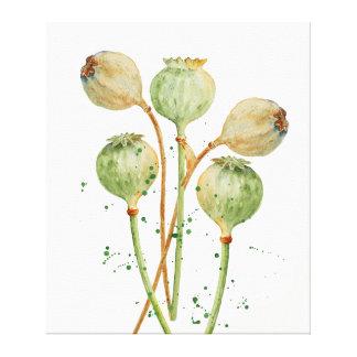 Watercolor-Mohn-Hülsen-Leinwand-Druck Leinwanddruck