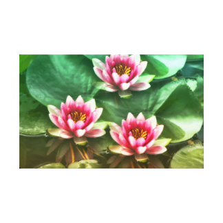Waterlilies2 Leinwanddruck
