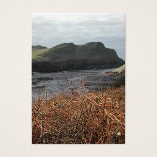 Watermouth, Devon, Großbritannien. Klippen Visitenkarte