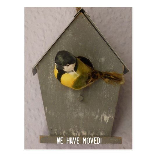 We have moved! - postcard (Birdhouse) Postkarte