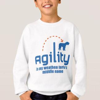 Weathen Terrier Sweatshirt