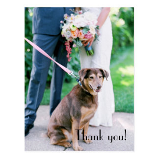 Wedding danken Ihnen Postkarte