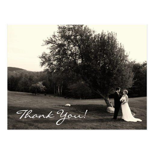 Wedding danken Ihnen Postkarten