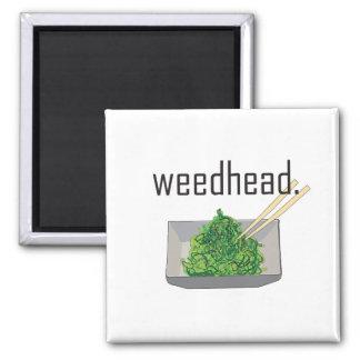 weedhead. (Meerespflanze) Quadratischer Magnet