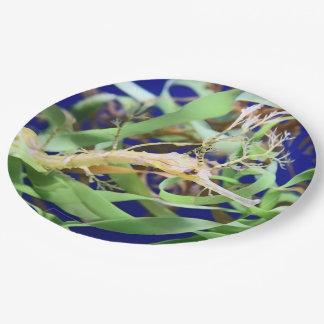 Weedy Seedrache Pappteller