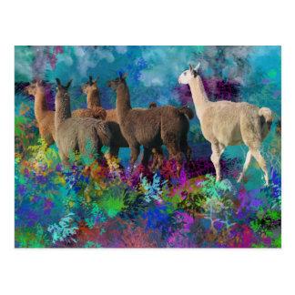 Weg des Lama-fünf im Fantasie-Land für Camelids Postkarte