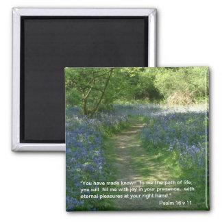 Weg des Lebens - Magnet der Bluebells-|