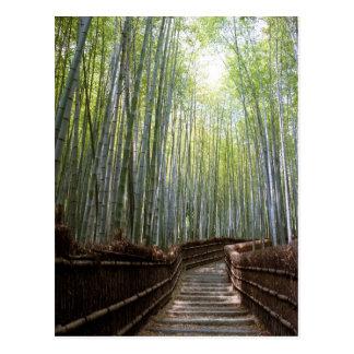 Weg durch den Bambus Postkarte