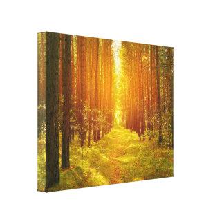 Weg im Holz Leinwanddruck