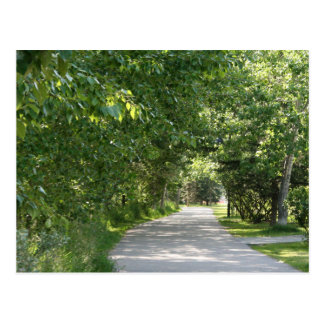 Weg unter Baumpostkarte Postkarte