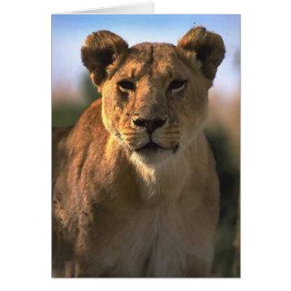 Weibliche Löwin-Löwe-Liebhaber-Geschenke Karte