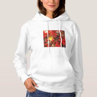 Weibliche und rote Beeren des Kardinals, IL Hoodie