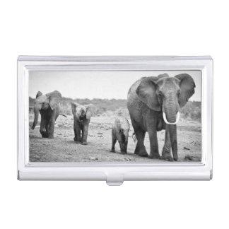 Weiblicher afrikanischer Elefant und drei Kälber, Visitenkarten-Dose