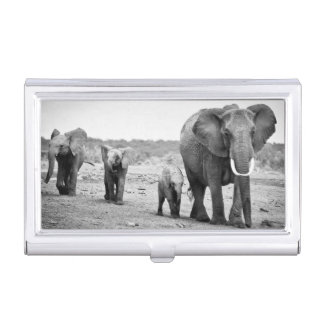 Weiblicher afrikanischer Elefant und drei Kälber, Visitenkarten Etui