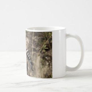 Weiblicher Hoopoe auf Stamm Kaffeetasse