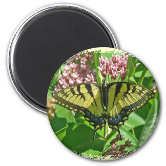 Weiblicher Osttiger-Frack-Schmetterlings-Magnet Runder Magnet 5,7 Cm