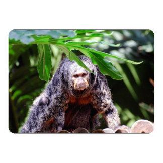 Weiblicher Saki Affe Personalisierte Ankündigung