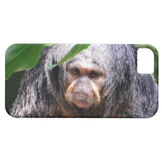 Weiblicher Saki Affe Schutzhülle Fürs iPhone 5