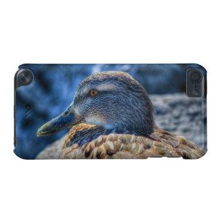 Weibliches Stockenten-Enten-Tier-Porträt iPod Touch 5G Hülle