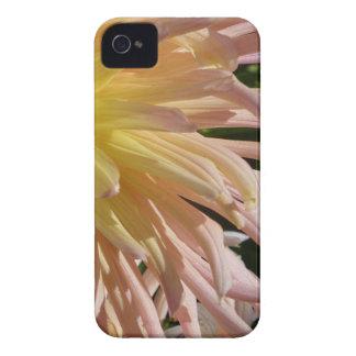 Weich Rosa Case-Mate iPhone 4 Hülle