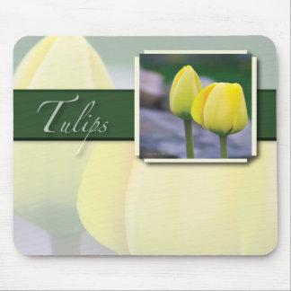 Weiche gelbe Schönheit im Frühjahr Mousepad