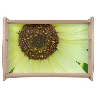 Weiche gelbe Sonnenblume Tablett