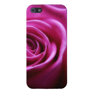 Weiche rosa Rose mit Blumen iPhone 5 Hüllen
