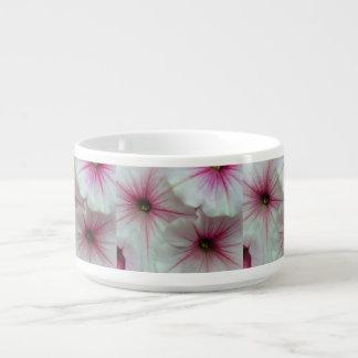 Weiche und empfindliche rosa Petunien Schüssel