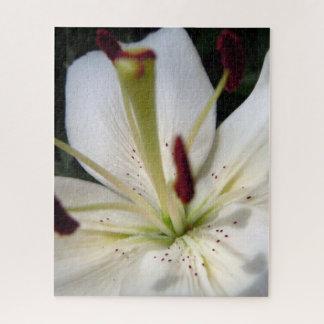 Weiche weiße Lilie herauf nahes Puzzle