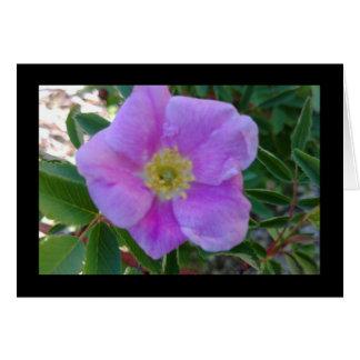 Weiches rosa Blüten-Lied von Solenoid. 8:14 Karte