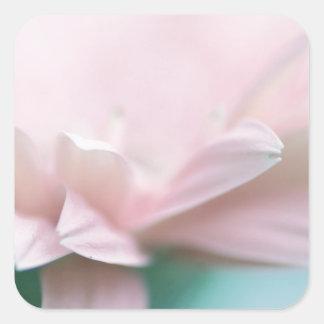 Weiches rosa Gerbera-Gänseblümchen Quadratischer Aufkleber