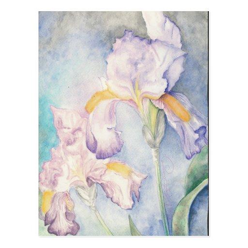 Weichste Iris-BlumenWasserfarbe Postkarte