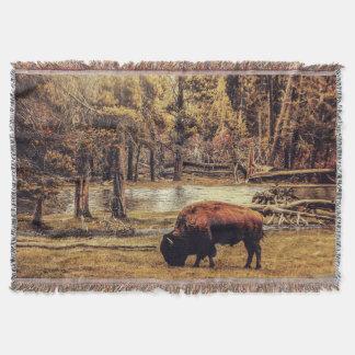 Weiden lassen der Büffel-Wurfs-Decke Decke