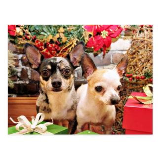 Weihnachten - Chihuahua - Gordy und Pedro Postkarte