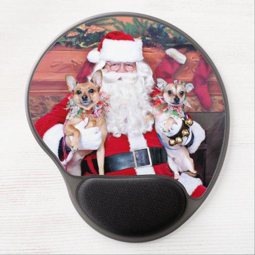 Weihnachten - Chihuahua X - Gänseblümchen und fels