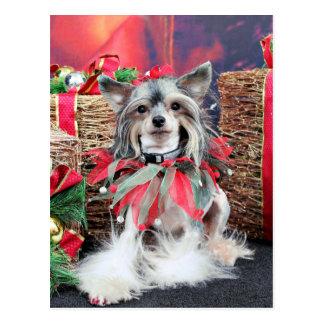 Weihnachten - chinesisches mit Haube - Sheeba Postkarte