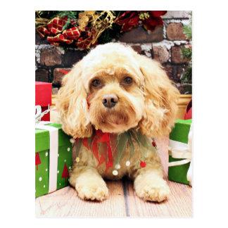 Weihnachten - Cockapoo - Morgan Postkarte