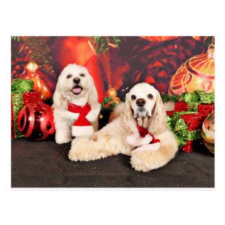 Weihnachten - Cockerspaniel - Toby, Havanese - Postkarte