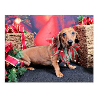 Weihnachten - Dackel - Kupfer Postkarte