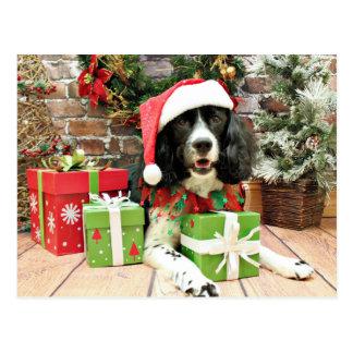 Weihnachten - englischer SpringerSpaniel - Lucy Postkarte