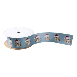 Weihnachten, Hund Shih Tzu, Weihnachtsmannmütze Satinband