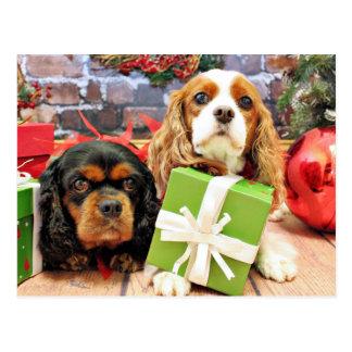 Weihnachten - Kavalier - süße Erbse und Mohnblume Postkarte
