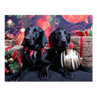 Weihnachten - Labrador - Banjo und ausgewachsener Postkarte