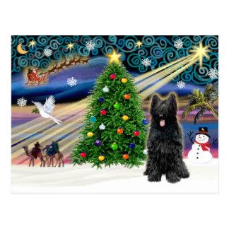 Weihnachten magisches Briard (Schwarzes) Postkarte
