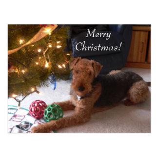 Weihnachten mit Madeleine-Postkarte Postkarte