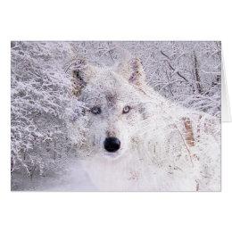 winterwolf geschenke. Black Bedroom Furniture Sets. Home Design Ideas