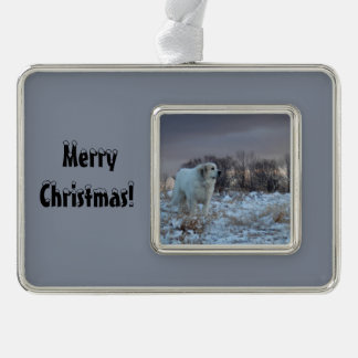 Weihnachten Pyrenäen Rahmen-Ornament Silber